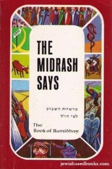 The Midrash Says 4: Book of Bamidbar