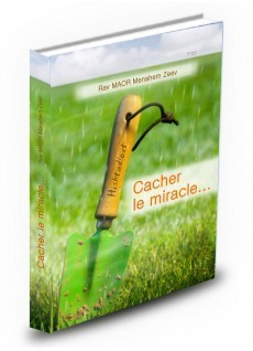 Cacher le Miracle